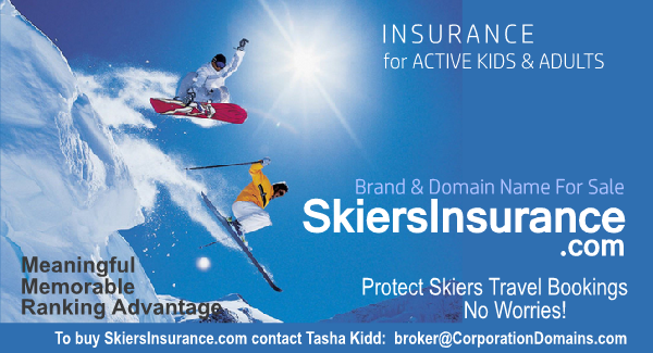 Skiers Insurance domain name image